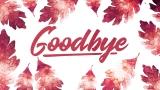 Thanksgiving Crisp Leaves Closing Still