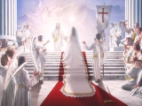 Bride of Christ sill images