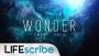 Wonder Theme Pack