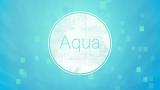 Aqua Color 5 Pack