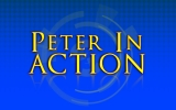 Peter In Action Collection