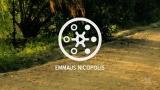 Emmaus Nicopolis