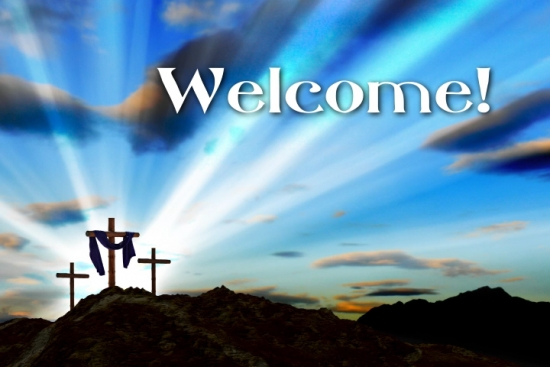 easter welcome background loop vertical hold media