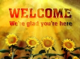 Welcome Background 2