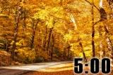 Autumn Countdown 12