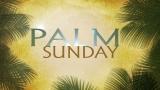 Palm Sunday Still Image 2 - HD and SD